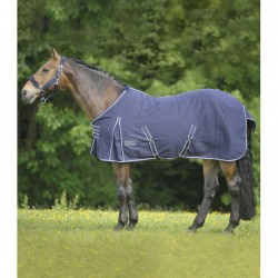 chemise ecurie walshausen
